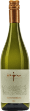 sauvignon-blanc-2